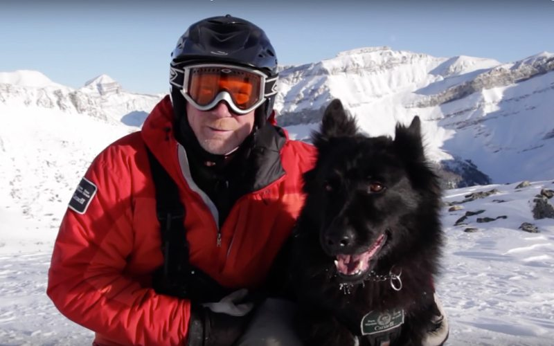 Rescue dogs are a valuable part of avalanche response teams in Banff National Park. Photo: Parks Canada.