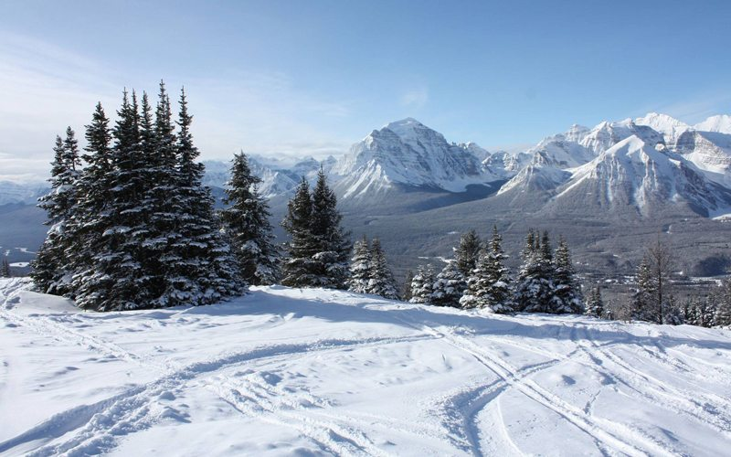 March 4, 2017: Fresh tracks at The Lake Louise Ski Resort. Photo: Kevin Gardner.