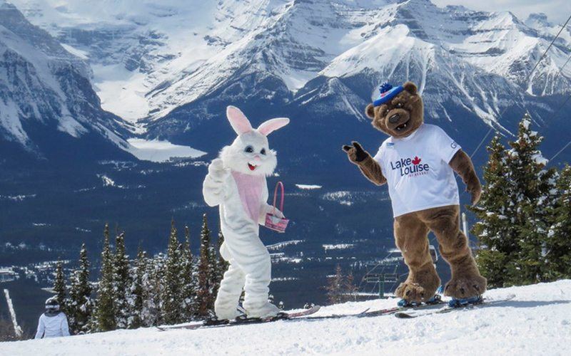 Easter Bunny and Grizz at Lake Louise Ski Resort