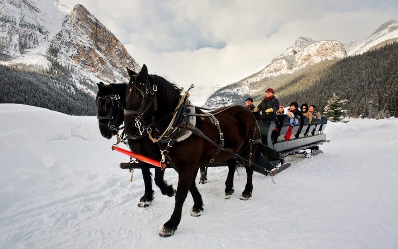 A sleigh ride is a magical way to experience Lake Louise. Photo: Banff & Lake Louise Tourism/Paul Zizka