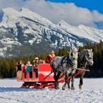 A horse sleigh ride in Banff National Park in front of Mt. Rundle. Photo: Paul Zizka