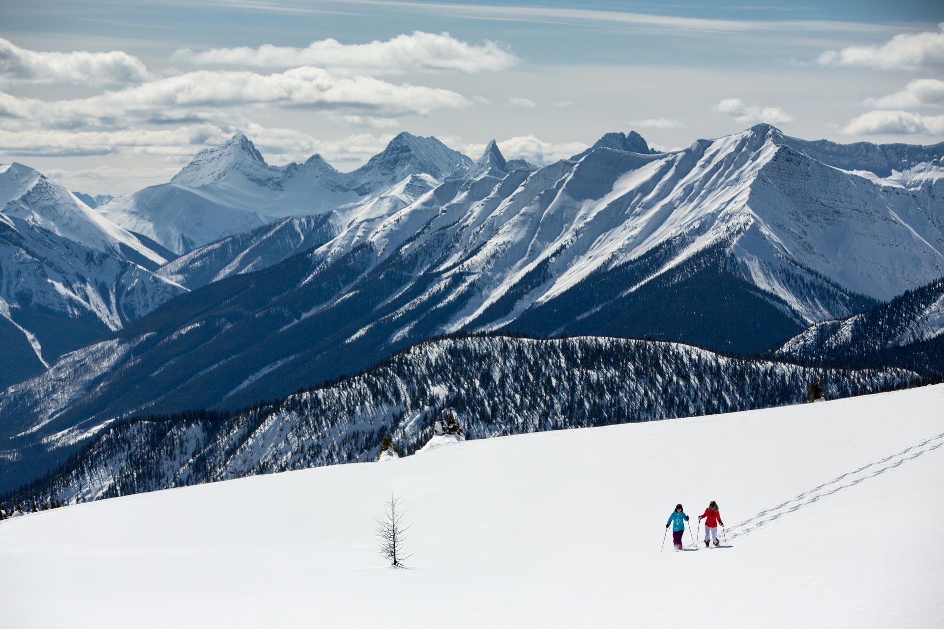 Snowshoeing at Banff's Sunshine Meadows. Photo by Paul Zizka.