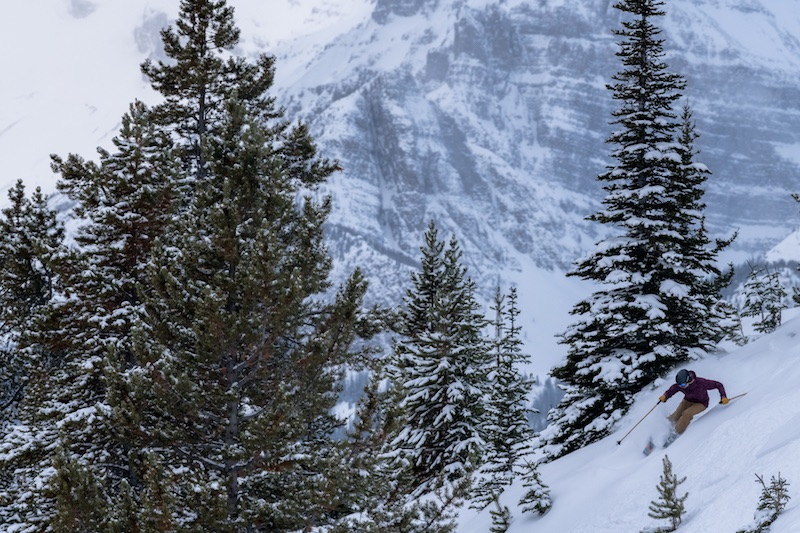 skier at Lake Louise Ski Resort