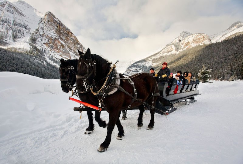 Horse-drawn sleigh ride at Fairmont Chateau Lake Louise, Banff National Park.
