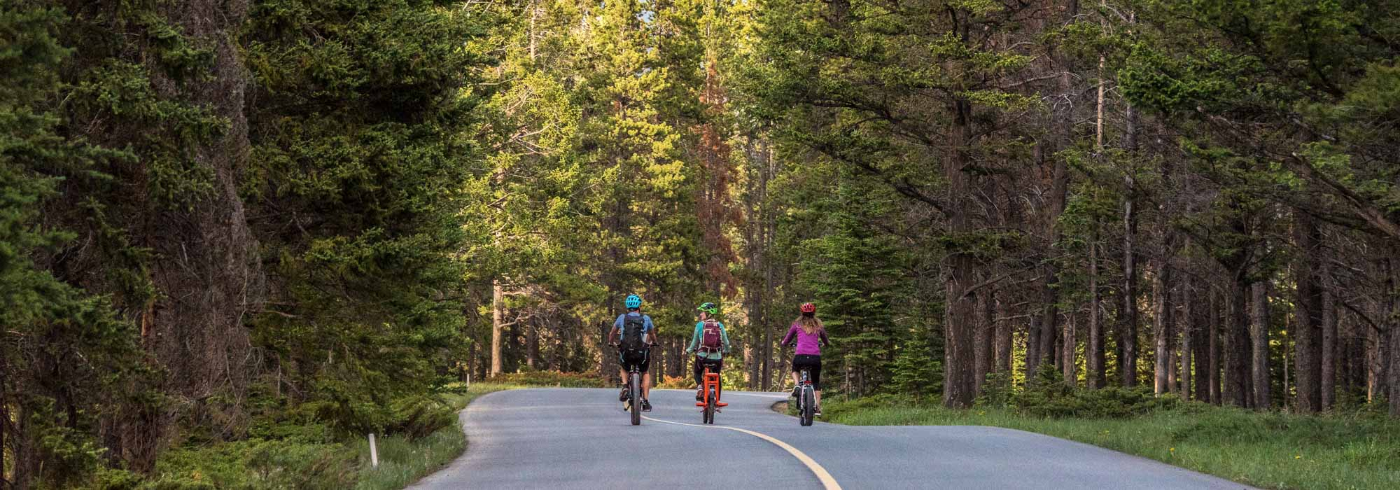 E-bike riders travel along the Golf Course Road loop in Banff National Park.
