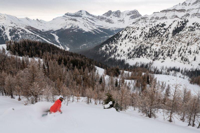 Skier at Lake Louise Ski Resort, Banff National Park.