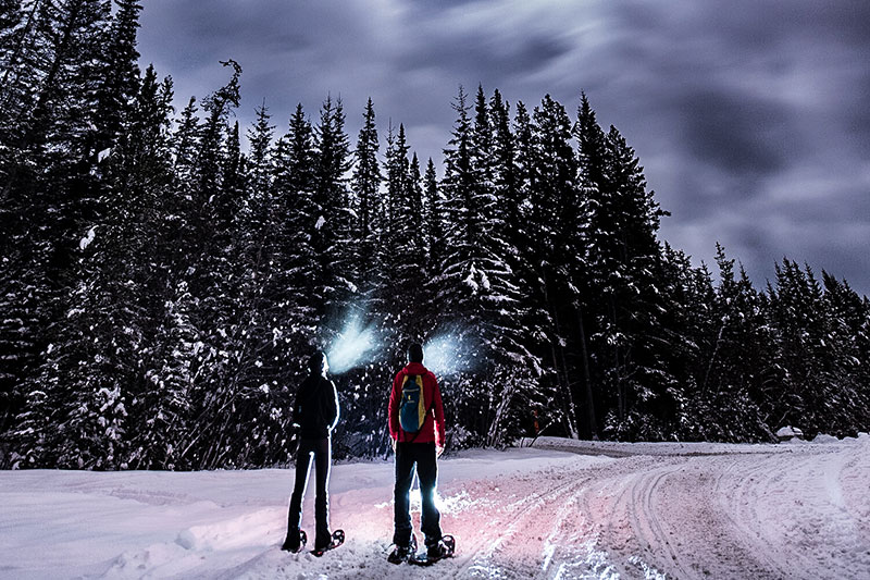 Snowshoe Tours at Lake Louise Ski Resort