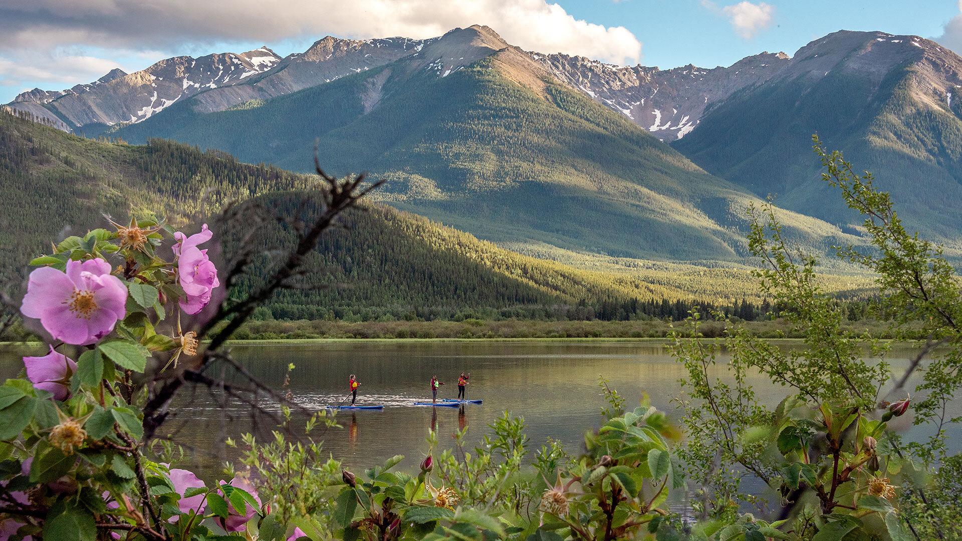 Paddleboarding in Banff National Park