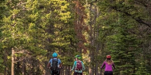 E-bike riders travel along the Golf Course Road loop in Banff National Park.|Electronic bike on Vermillion Lakes Road in Banff National Park